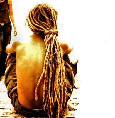 rasta way of growing hair the hair shaman