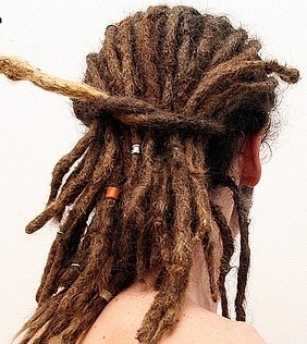 how to grow your hair for dreads
